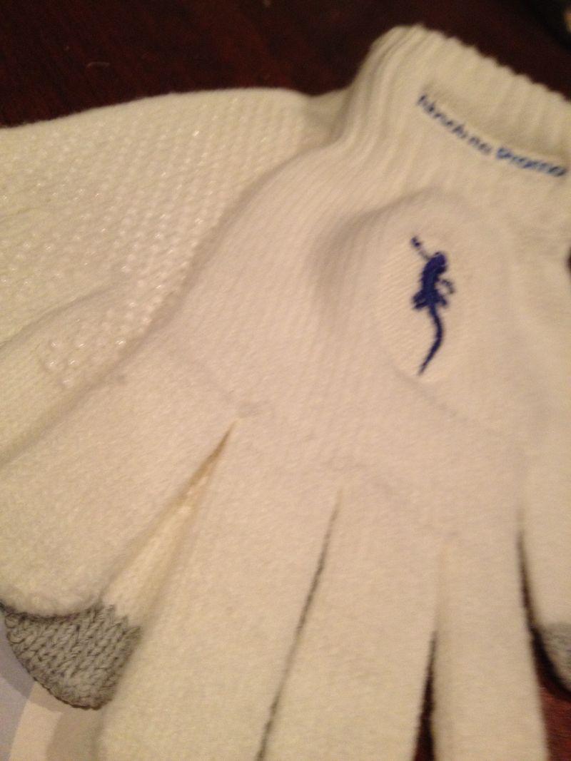 Logo texting gloves absolutepromo