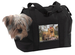 Custom_pet_carrier_3